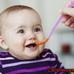 Thực đơn cho bé ăn dặm 6 – 7 tháng tuổi