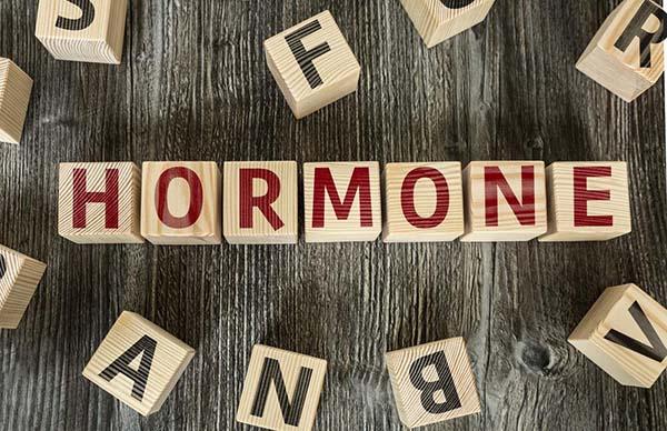 vai-tro-cua-hormone-tang-truong-caolonkhoemanh