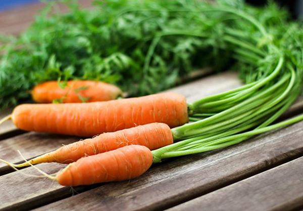 Cà rốt chứa nhiều vitamin