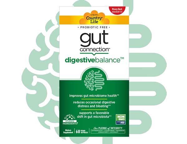 Đánh giá Gut Connection