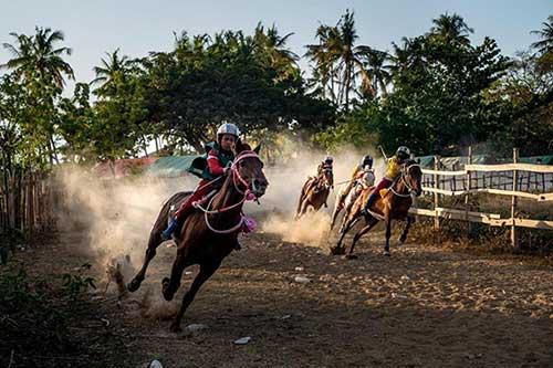 Nguy hiểm của trò chơi đua ngựa